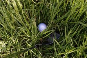 golf-881331_640